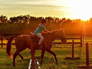 Summer vacation Stubaital | horse riding | Hotel Wiesenhof Mieders, Tyrol